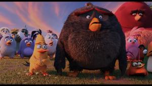 Hoạt Hình   4K HDR] The Angry Birds Movie 2016 2160p UltraHD Blu-ray